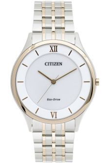 Часы CITIZEN AR0075-58A