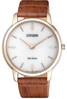 Часы CITIZEN AR1133-15A