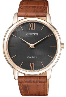 Часы CITIZEN AR1133-15H