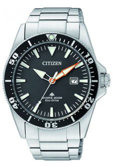 Часы CITIZEN BN0100-51E